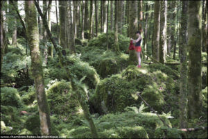 Randonnée de le Haut-Doubs Suisse
